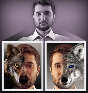 Two wolves inside every man.