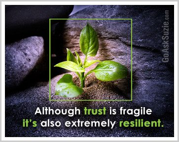 Trust Is Fragile Compressor